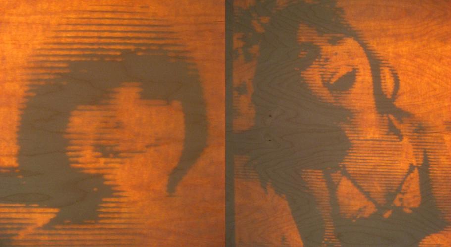 Laser Cut Wood Veneer Screen Installation
